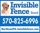 Invisible Fence of NEPA